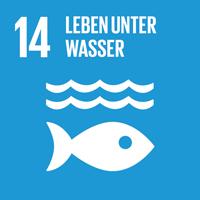 14 - Leben unter Wasser